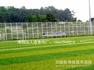 聊城、济南、德州、东营、滨州、潍坊、烟台、威海学校足球场人造草坪