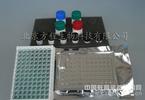 人3-硝基酪氨酸试剂盒,人3-NT检测ELISA法Human 3-Nitrotyrosine,3-NT ELISA Kit