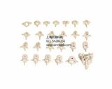 人体椎骨总汇模型、椎骨功能变化示教模型