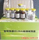 流感A IgG定量(Influenza G IgA)ELISA试剂盒