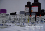 人催乳素(PRL)ELISA Kit