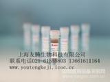 犬前列腺特异性抗原(PSA)ELISA试剂盒