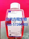 GIBCO10438-026经过质量认证和热灭活的胎牛血清