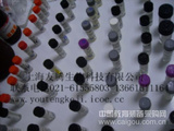 鸭γ干扰素(IFN-γ)ELISA试剂盒