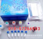 人碱性成纤维细胞生长因子受体(bFGFR)ELISA价格