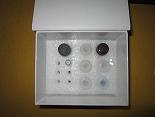 活化蛋白C抵抗素ELISA试剂盒厂家代测,进口人(APCR)ELISA Kit说明书