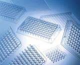 丹麦NUNC 原装384孔V底PCR板