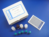阿维菌素检测试剂盒