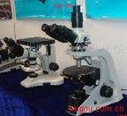 BM-500P 偏光显微镜