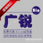 大鼠β内啡肽受体(β-EPR)ELISA试剂盒