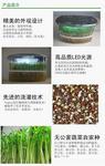 制匯網 實驗箱/小型植物生長屋