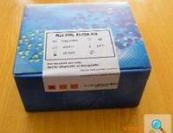 人组织多肽抗原(TPA)ELISA 试剂盒