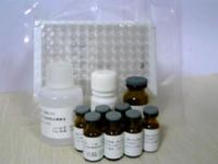 大鼠纤连蛋白(FN)检测试剂盒