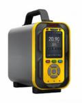 TD6000-SH-C2H6手提式乙烷气体分析仪