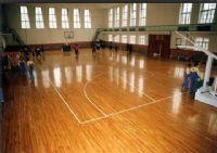 体育馆室内木地板篮球场场地,木地板羽毛球场地