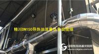 导热油热量表,锅炉改造首选,厦门精川又在化工厂成功应用