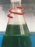 烟鲁绿0.1%的冰乙酸溶液