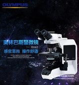 奥林巴斯 BX43生物显微镜