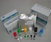 人单核细胞趋化蛋白1(MCP-1/CCL2/MCAF)ELISA Kit
