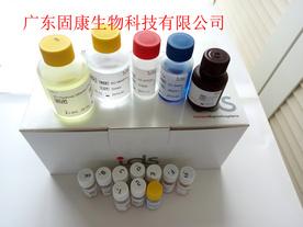 25羟基维生素D检测试剂盒