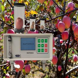 亚欧 果蔬呼吸测定仪,果蔬呼吸仪,?果蔬呼吸检测仪 ?DP-GS3