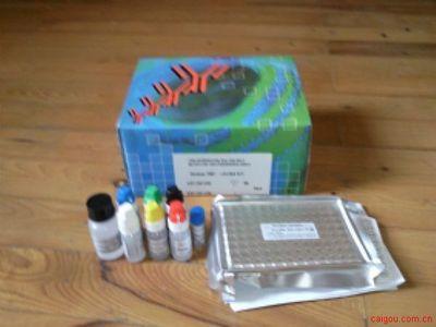 大鼠胃肠癌标志物CA199Elisa试剂盒