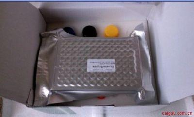 人生长激素释放因子(GH-RF)ELISA Kit