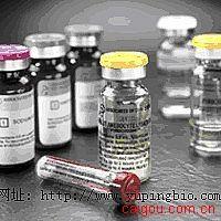 人富组氨酸蛋白2(HRP2)ELISA试剂盒