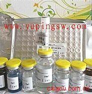 人卵巢癌抗原(CA125)ELISA试剂盒