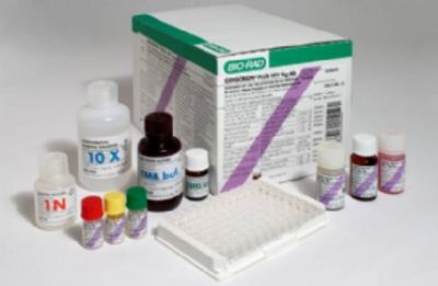 人丝狀血球凝集素(FHA)ELISA试剂盒