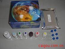 犬维生素E(VE)ELISA试剂盒