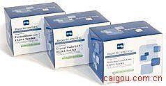 豚鼠内皮型一氧化氮合成酶(eNOS)ELISA试剂盒