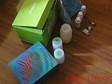 人补体1q(C1q)ELISA试剂盒