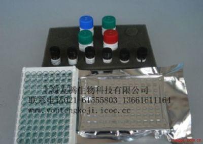 白介素8受体IL-8R ELISA试剂盒