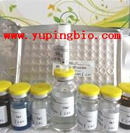 人胎盘蛋白14(PP14)ELISA试剂盒