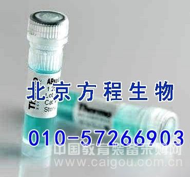 人组织蛋白酶B(CTSB)检测/(ELISA)kit试剂盒/免费检测