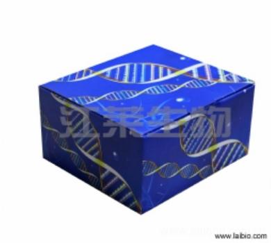 人白介素13(IL-13)ELISA试剂盒
