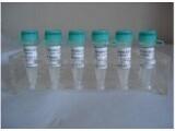 进口标准品西替利嗪丙三醇酯杂质