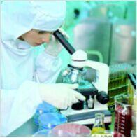 进口标准品非洛地平代谢物
