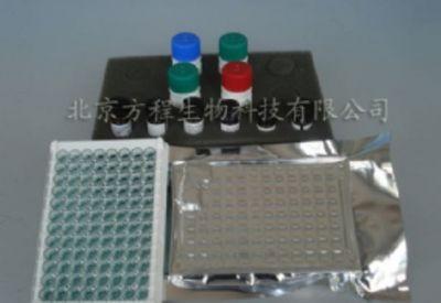 人BLC-1/CXCL13 ELISA检测试剂盒