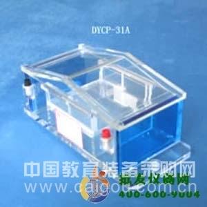 微琼脂糖电泳仪 DYCP-31A