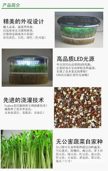 制汇网 实验箱/小型植物生长屋