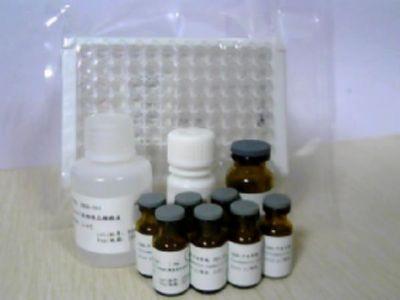 PCNA免疫组化检测试剂盒 H