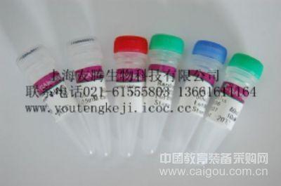 大鼠肿瘤坏死因子相关凋亡诱导配体3(TRAIL-R3)ELISA Kit
