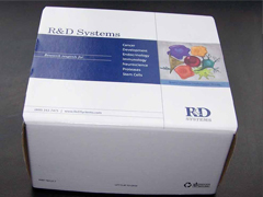 人甲状腺素抗体(Thyroid Ab)ELISA试剂盒