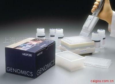 小鼠丙酮酸脱氢酶E1 ELISA试剂盒