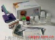 小鼠β干扰素ELISA试剂盒
