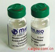 20(S)-人参皂苷Rh2