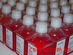 (ANG-2)猪血管生成素2Elisa试剂盒
