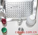 M单核细胞趋化和激活因子MCAF 酶联免疫/酶免法(Elisa试剂盒)